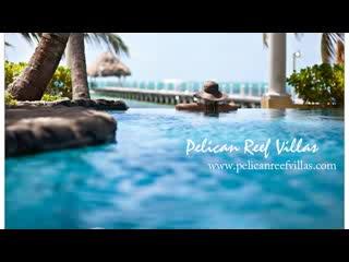 Pelican Reef Villas Resort照片