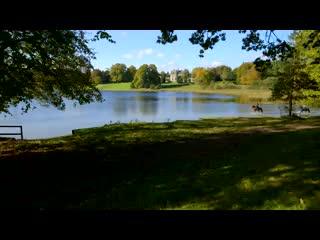Glaslough, Ιρλανδία: Castle Leslie Estate Aerial Video