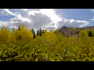 Sun Valley-Ketchum, ID: Fall in Sun Valley, Idaho