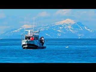 Ninilchik, AK: Deep Creek Fishing Club