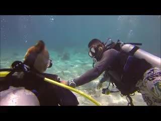 Las Terrazas Resort: Diving on Ambergris Caye - Sting Ray