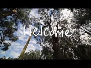 Arthurs Seat, Australië: anderida walk trough