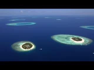 Ihuru Island: Angsana Ihuru
