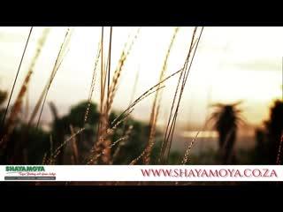 Shayamoya Tiger Fishing & Game Lodge: A true Zululand gem