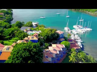 True Blue Bay Boutique Resort: Diving the Underwater Grand Canyon in Grenada