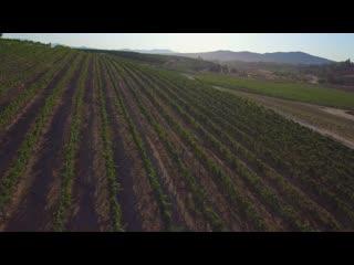 เตเมคูลา, แคลิฟอร์เนีย: Temecula Valley Overview