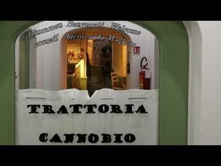 กานโนบิโอ, อิตาลี: Trattoria Cannobio da Ale & Vale