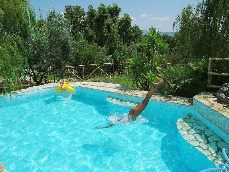 Seasonal outdoor pool, 8.5mt x 4.5 m depth 1.60 mt.