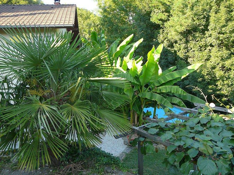 Sur les hauteurs de Voreppe, studio indépendant dans maison, randonnée, ski, holiday rental in La Sure en Chartreuse