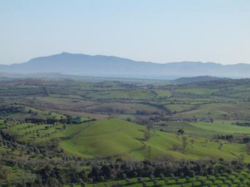 Accogliente appartamento in Maremma Toscana a 12 km dal mare dell'Argentario, vacation rental in Montiano