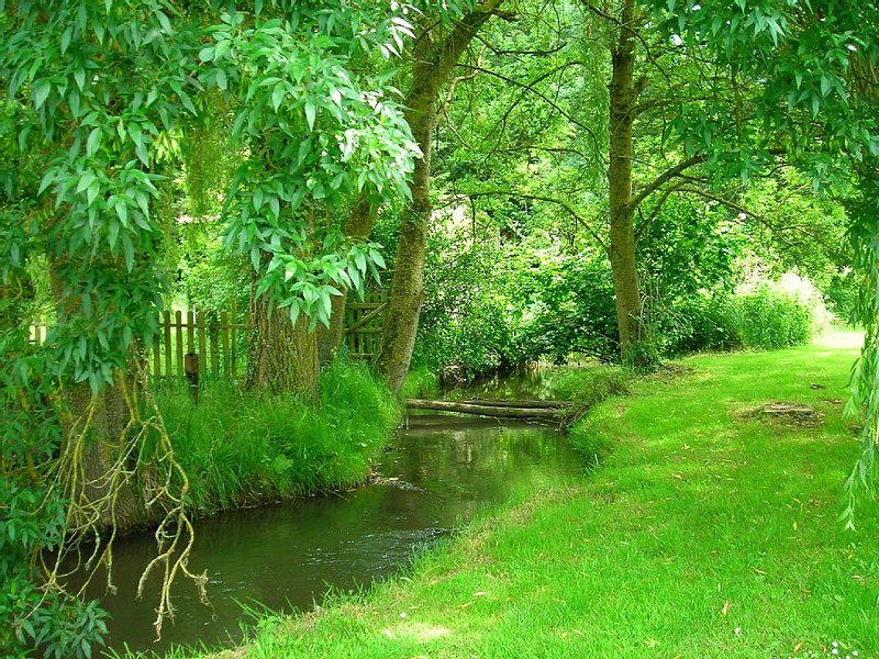 Tranquil riverside cottage in grounds of watermill., holiday rental in Lhomme