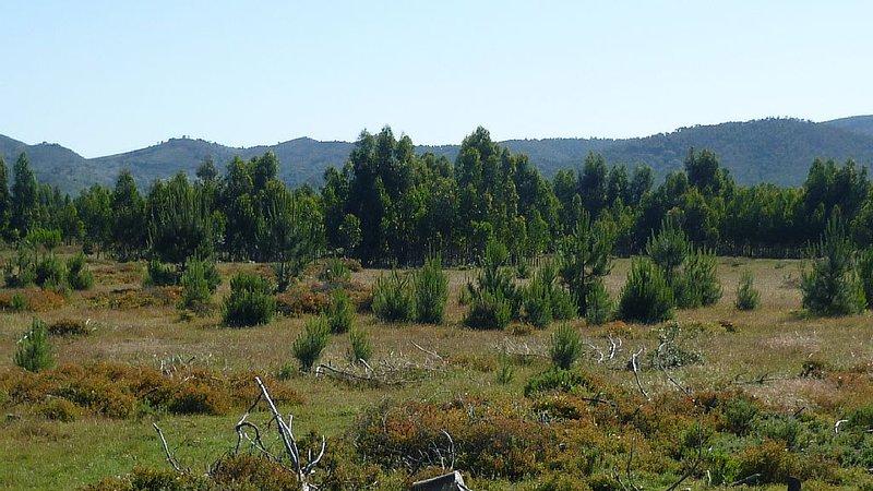 Serra do Cercal