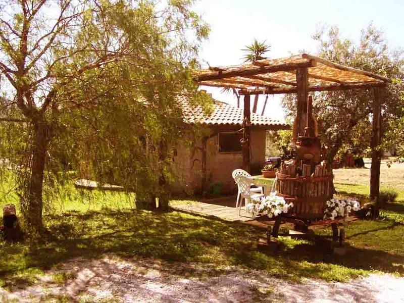 CASA VACANZA ROMA con giardino immersa nel verde delle campagne dei CASTELLI ROM, Ferienwohnung in Artena