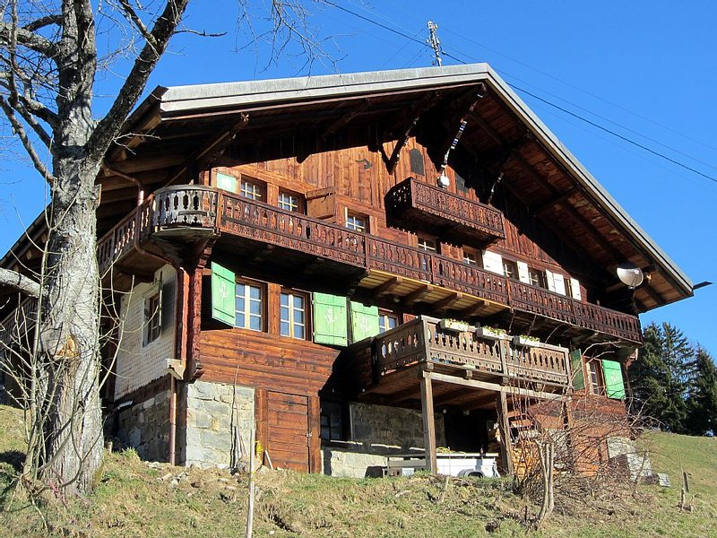 Fantastic chalet, summer and winter across the Dents du Midi, Portes du Soleil, aluguéis de temporada em Champoussin