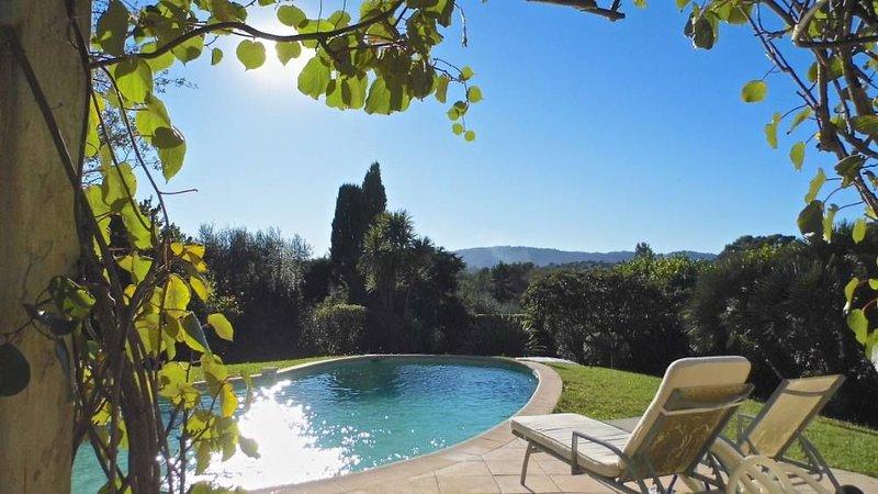 Villa avec piscine près de Cannes, vacation rental in La Roquette-sur-Siagne