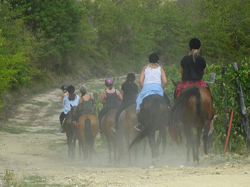 The next door riding school start a ride every hour