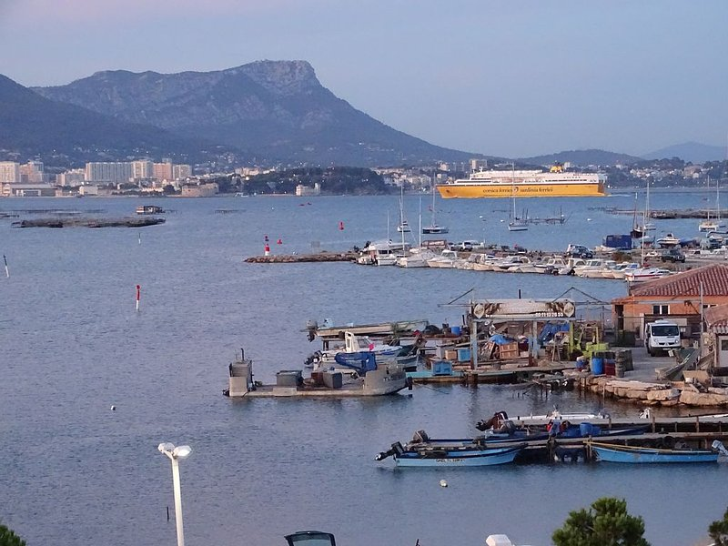 Studio vue mer  exceptionnelle à 100m des plages, holiday rental in Tamaris-sur-Mer
