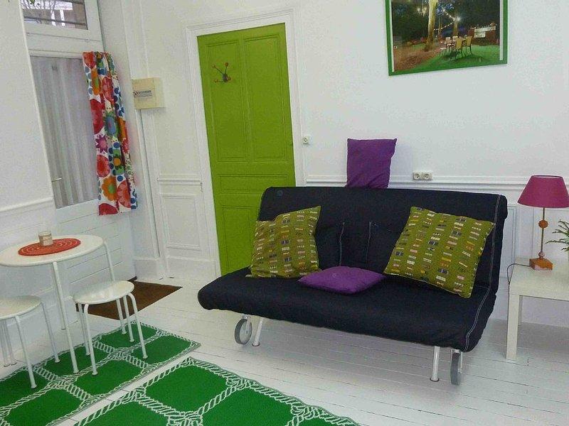 PETITE BULLE VERTE  EN PLEIN CENTRE DE DIJON, vacation rental in Chenove