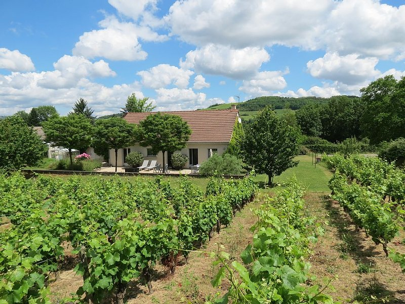 Private contemporary two bedroom house  between Santenay and Nolay, vacation rental in Chagny