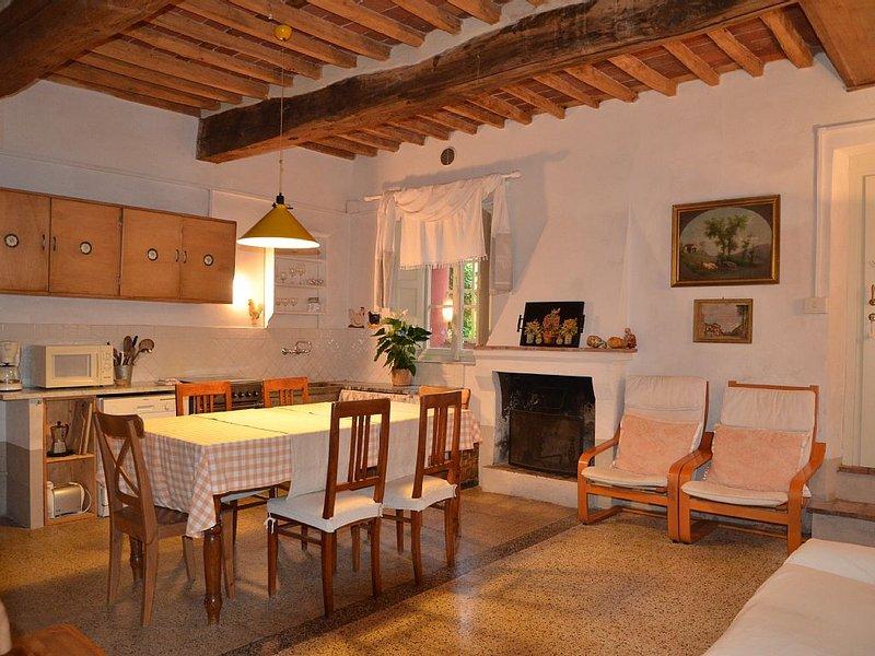 splendido appartamento in agriturismo con ampia piscina a 6 km da Lucca, vacation rental in San Quirico di Moriano