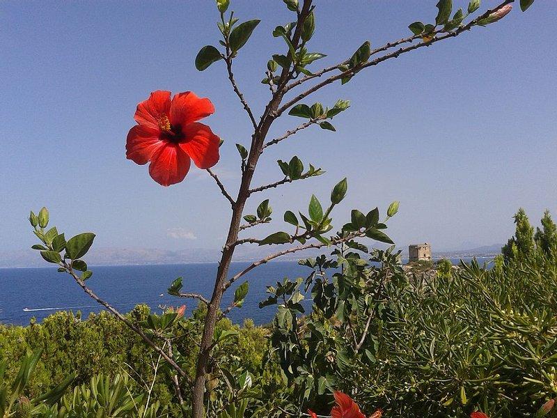 Vicino la tonnara di Scopello, casa con accesso al mare e vista panoramica, vacation rental in Castellammare del Golfo