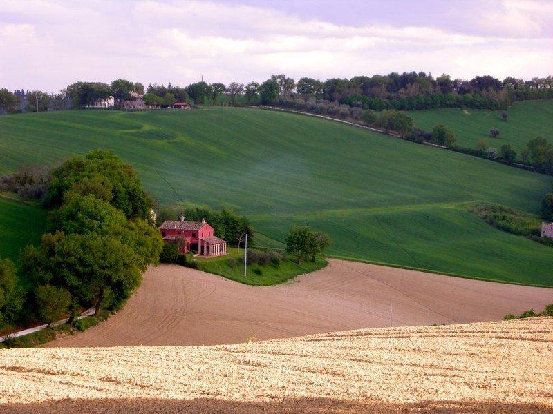 idyllische Haushälfte in wunderbarer Landschaft, location de vacances à Morro d'Alba