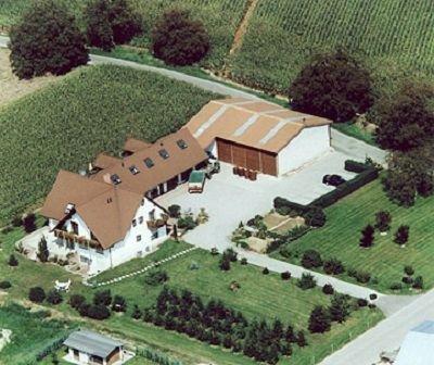 4-Sterne-Fewo (Tunibergblick) in ruhiger Ortsrandlage im Dreiländereck, holiday rental in Neuf-Brisach