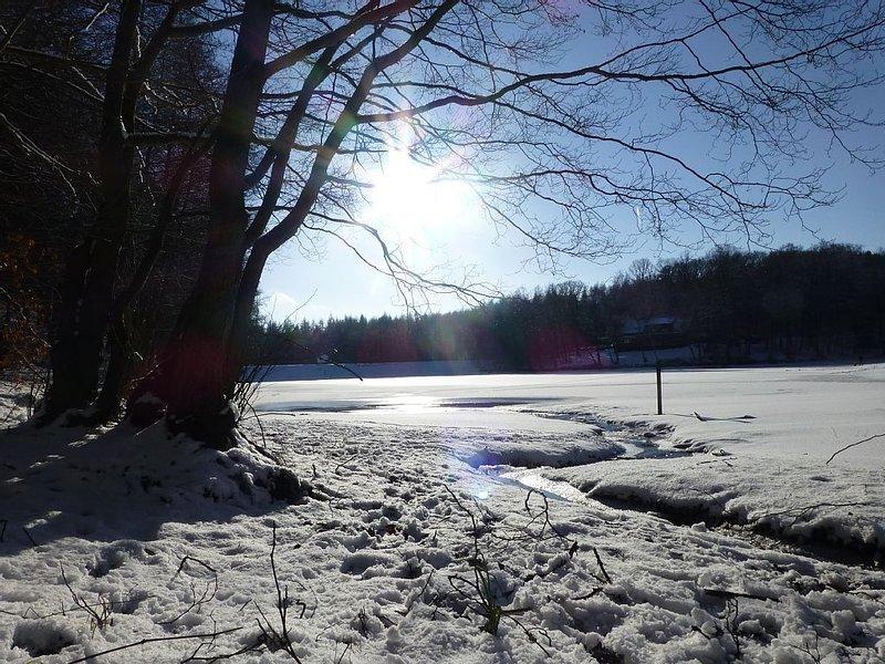 Winter am Kunstteich