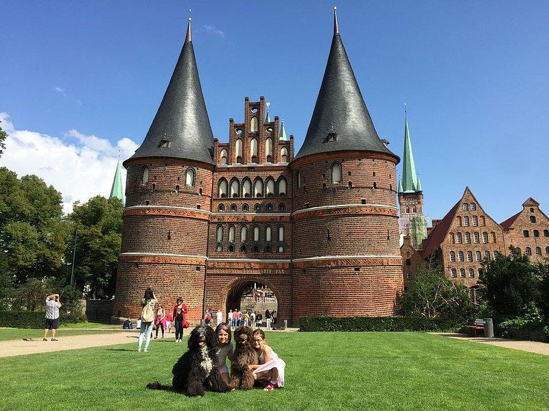 Ferienwohnung mit Garten nahe der Lübecker Altstadt, aluguéis de temporada em Ratzeburg