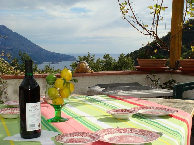 Ferienhaus NEGRA bietet Ihnen einen erholsamen und unvergesslichen Urlaub, vacation rental in Budva Municipality