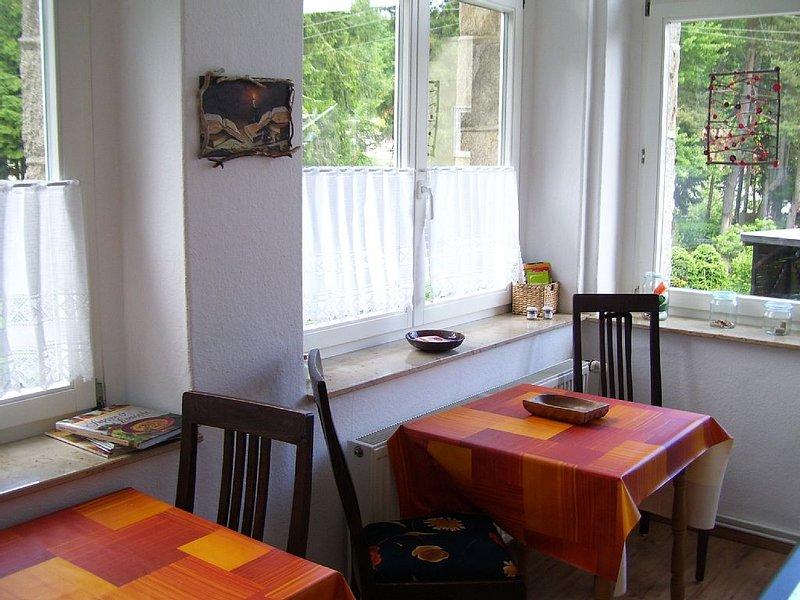 Wander-Lese-Urlaub in Jugendstilvilla im Hochharz, holiday rental in Tanne