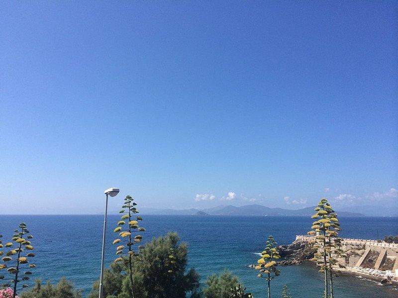 Blick auf die Insel Elba, ideal fuer einen Tagesausflug