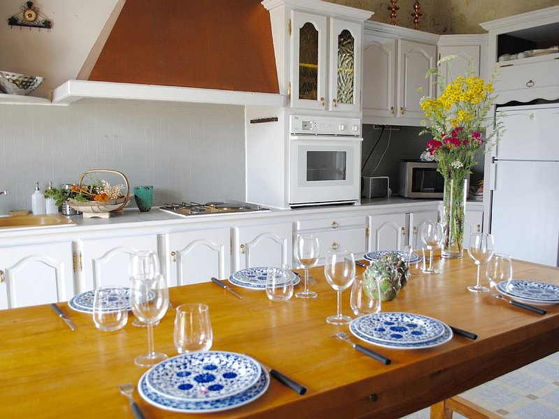 The Château Farmhouse in the Vines - Chinon - Loire, holiday rental in Varennes sur Loire