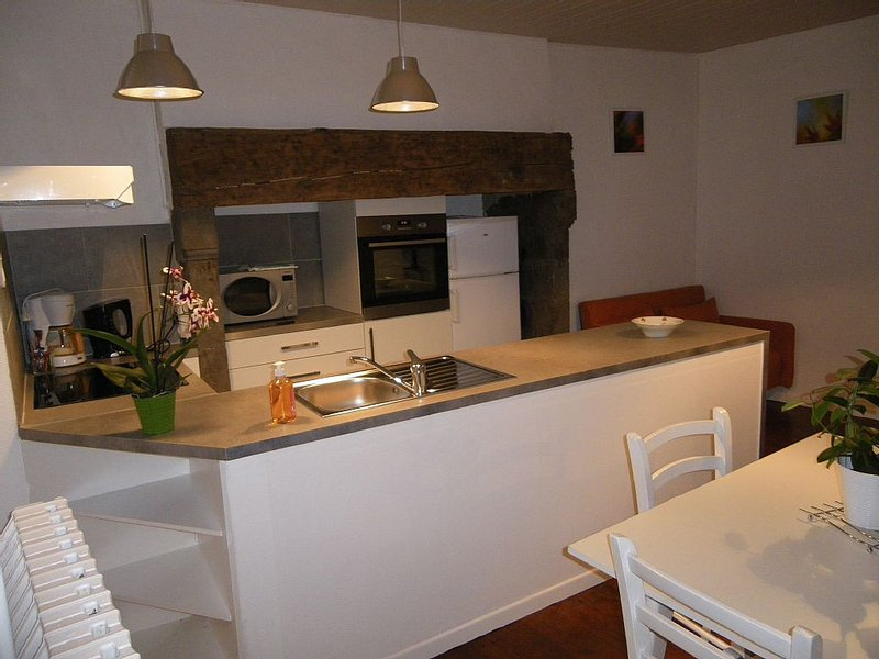 Charmant gite 45m2  proche AURILLAC., holiday rental in Roumegoux