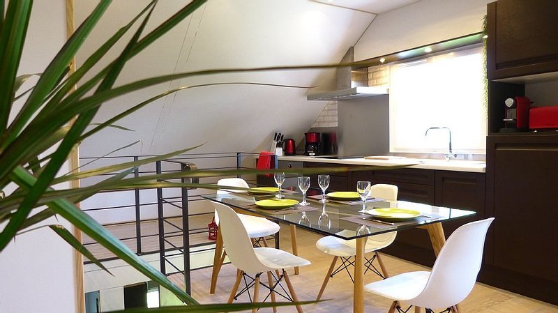 Cosy Loft : new, quiet, garden, BBQ, river, pkg...  Milly-la-Foret, holiday rental in Soisy-sur-Ecole