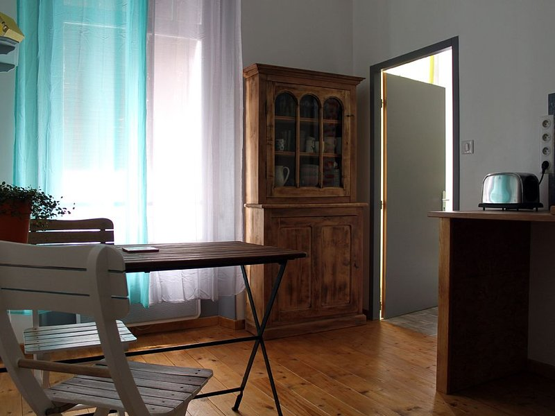 T2 Calme & Cosy -45 m2 Centre Ville, holiday rental in Pau