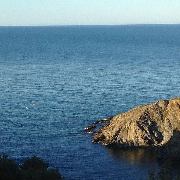 TERRACE FACING THE SEA, alquiler de vacaciones en Banyuls-sur-mer