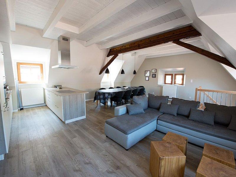 Gîte 'Claude', DUPLEX 155m², 2sdb, 2wc, 4chambres, terrasse, 6 km de Colmar, holiday rental in Trois-Epis