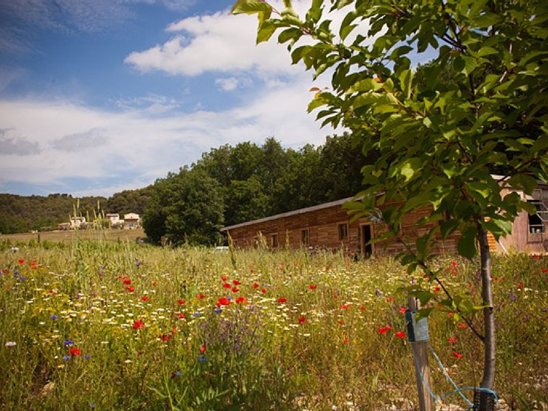 Holiday house in nature. Supply of UNESCO Biosphère Luberon-Lure. Forcalquier., vakantiewoning in L'Hospitalet