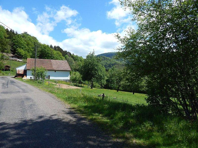 ferme 'chez la grand mère' très calme avec nos poneys, vacation rental in Haute-Saone