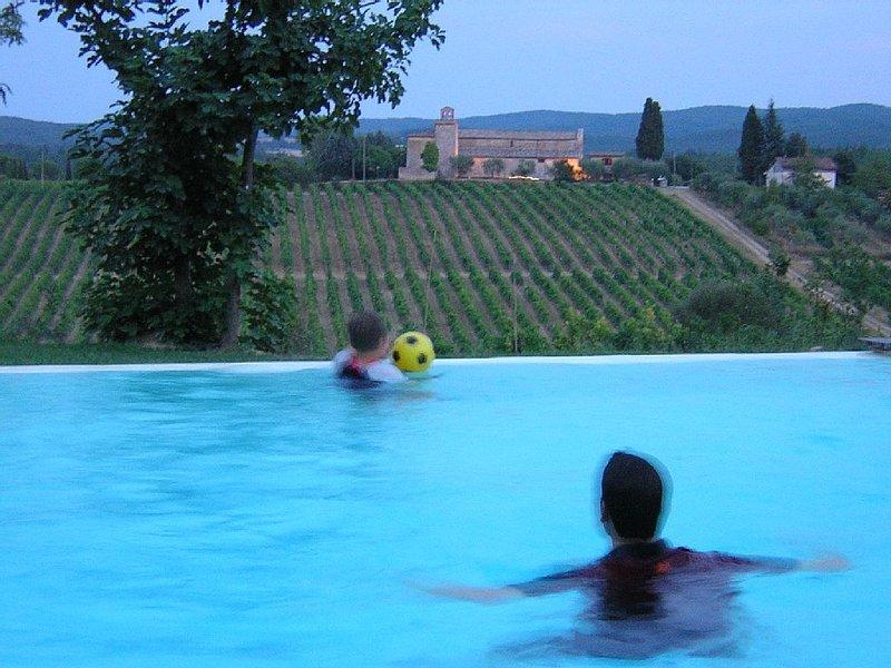 La Corte Charming Tuscany Villa, holiday rental in Siena