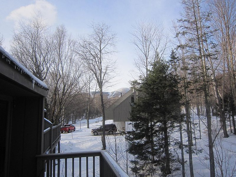 Sugarbush Condo: 1 Mile From Lincoln Peak, alquiler de vacaciones en Fayston