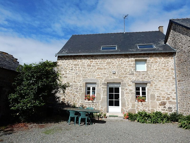 Stone house in Mayenne, vacation rental in Hambers