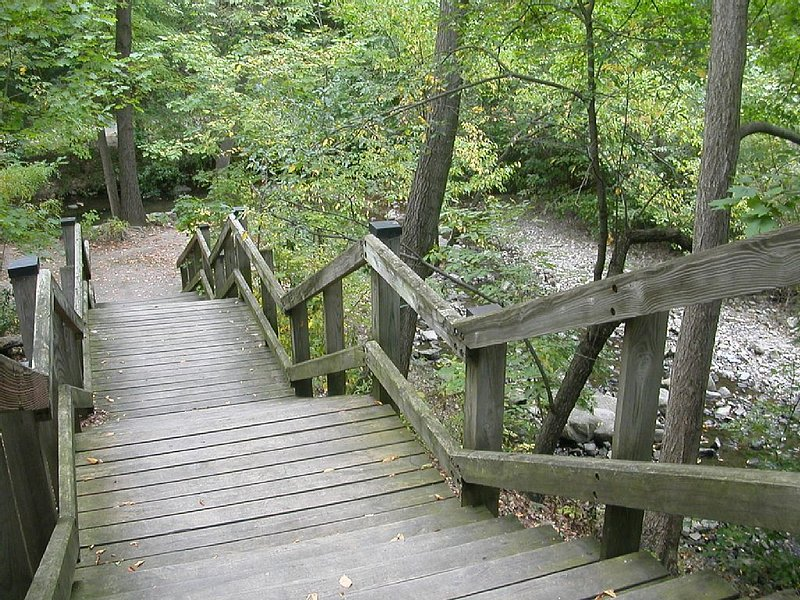 Steps down to ravine park from Cliffside Drive.