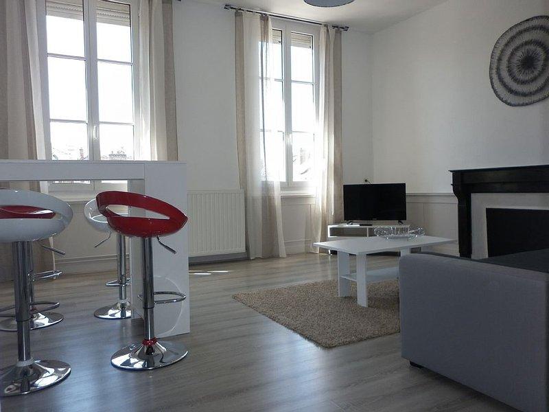 BEAU T2 VUE SUR LA SCULPTURE' LE COEUR' DE TROYES, vacation rental in Villechetif