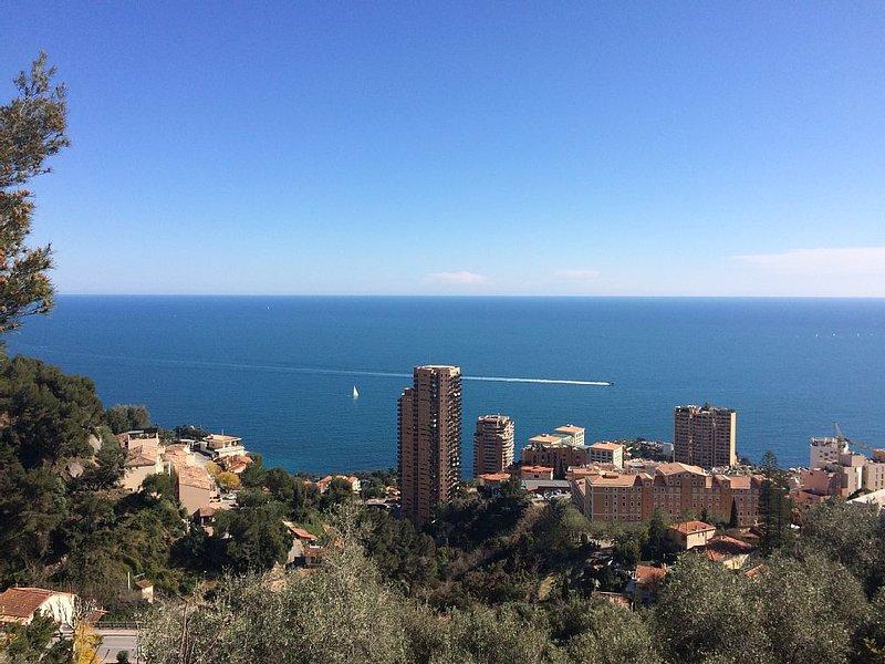 'La Palmeraie' Maison de charme Terrasses Jardin Vue Méditerranée proche Monaco, vacation rental in Roquebrune-Cap-Martin