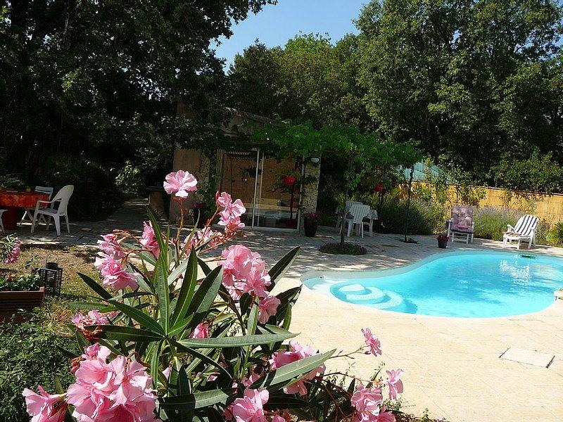 Joli cabanon de Provence avec piscine, holiday rental in Ollieres