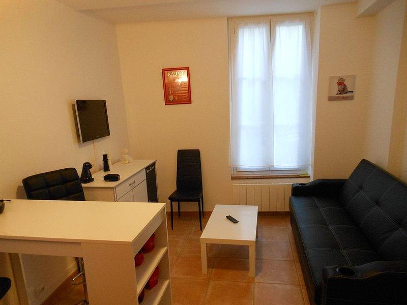 F1 meublé centre ville proximité Fontainebleau, Buthiers, ..., holiday rental in Larchant