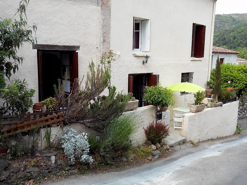MAISON DE VILLAGE A CARACTERE CEVENOL 'FLEURS', holiday rental in Camprieu