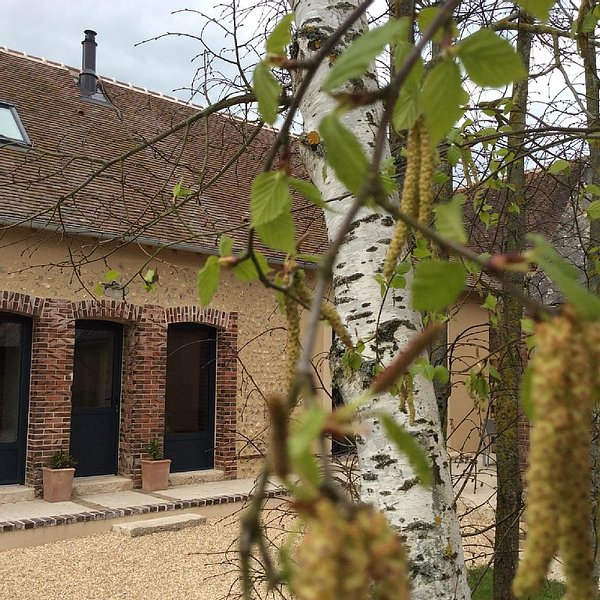 Charming cottage in the countryside 15 minutes from Chartres and its famous cat, aluguéis de temporada em Illiers-Combray